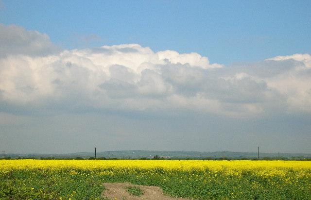 View across Steventon Field