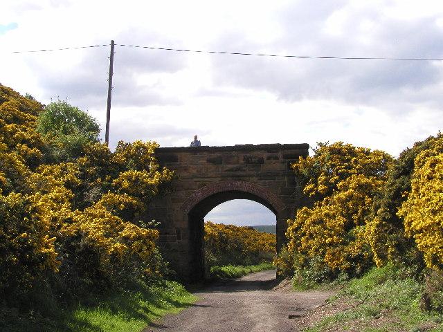 Road bridge (to Stoupe Bank) over the old Scarborough to Whitby Railway