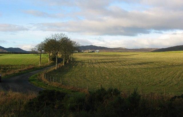 Saddlebank