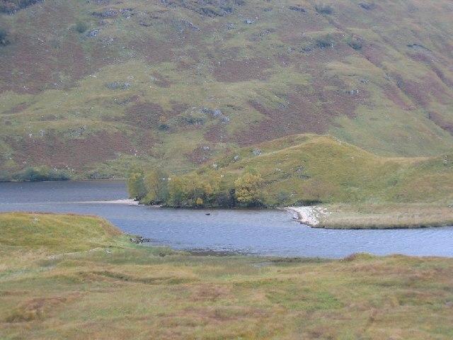 End of Loch Arkaig