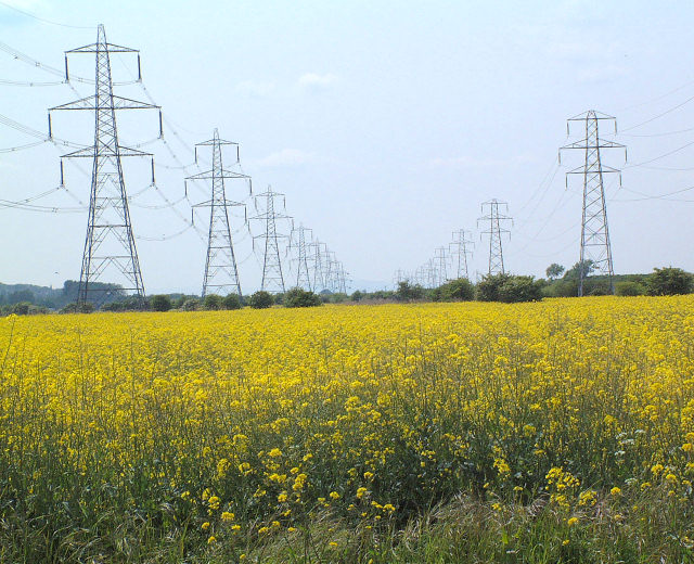 Pylons and Rape