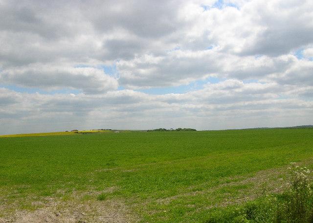 Harwell Field SE