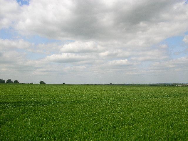 Harwell Field NW