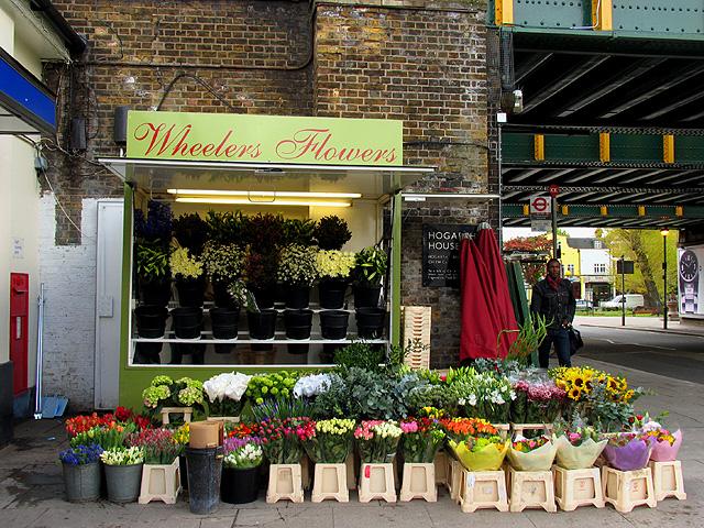 Turnham Green: Flower Seller