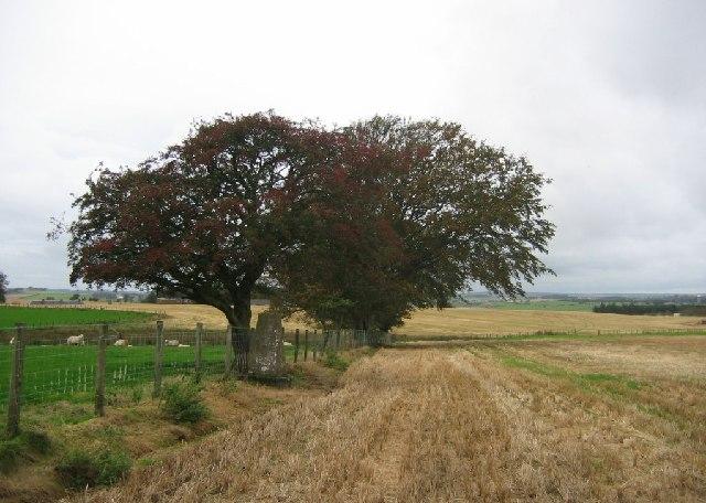 Libberton