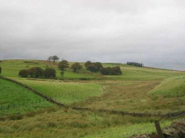 Farmland, Blyth.