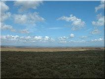 NY8907 : Bowes Moor, Yorkshire by David Medcalf