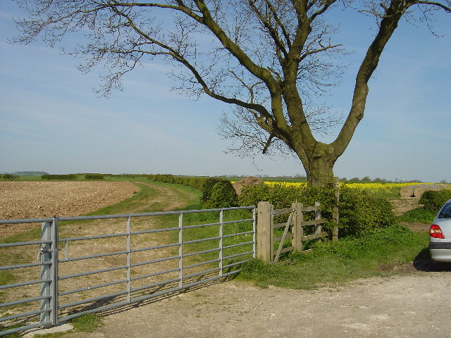The Minster Way near to Huggate