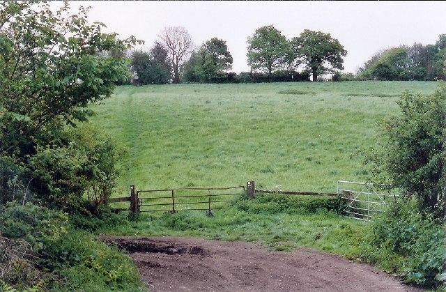 Dyson's Wood Farm