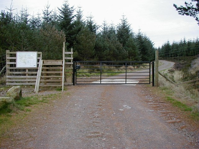 Entrance to Griffin Forest