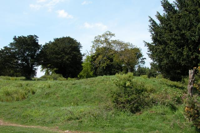 Earthworks on Bow Hill