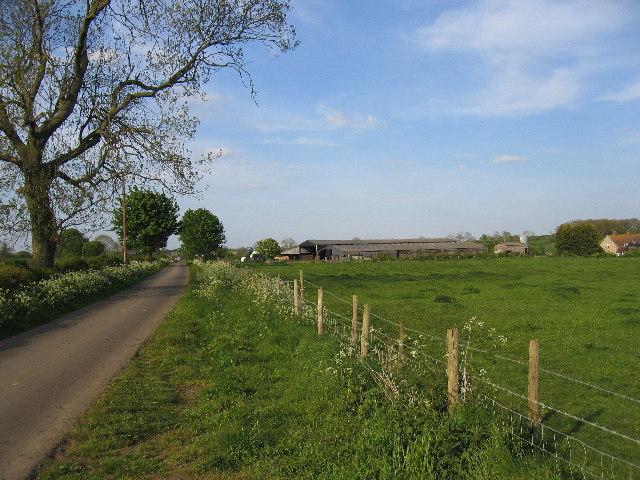 Collingham Lane