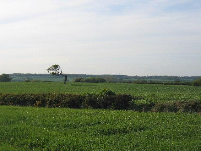 Between Offchurch and Hunningham