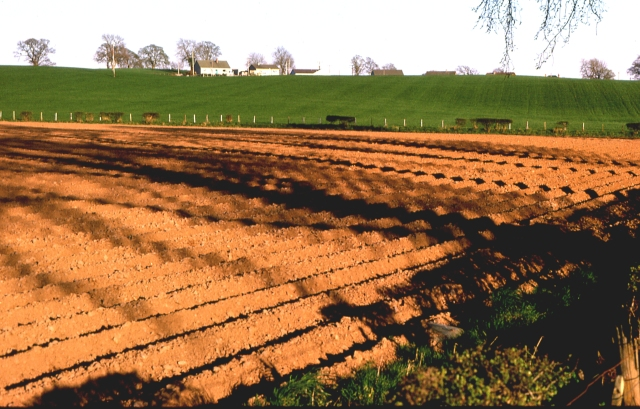 Ploughed field near Guildtown