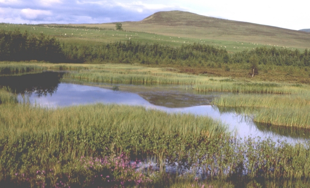 Hill Lochan above Glen Tilt