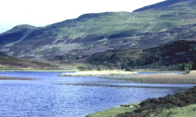 Loch an Dàim