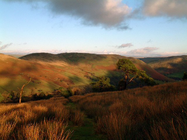 Grayrigg Forest above Borrowdale