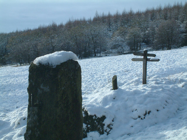 Above Errwood Reservoir