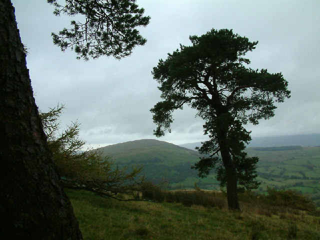 South-eastern slopes of Great Mell Fell