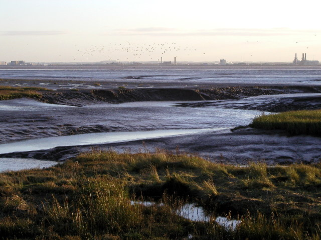 Stone(y) Creek on the River Humber