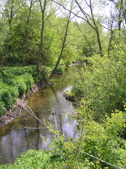 Piddle Brook near Kington.