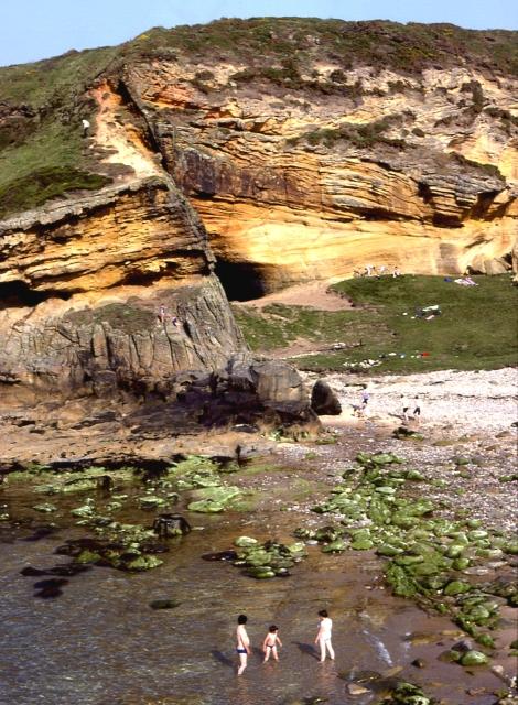 Cliffs at Clashach Cove