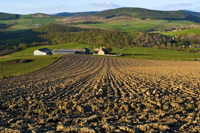 Farmland at Easter Fodderletter Farm