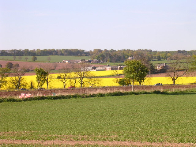 Farmland near Travebank