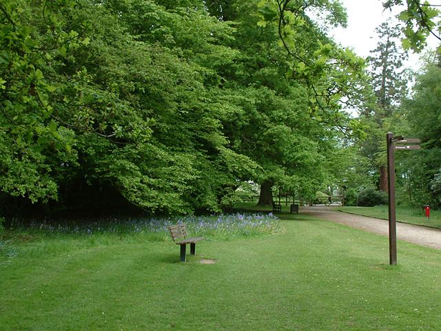 Whitewebbs Park