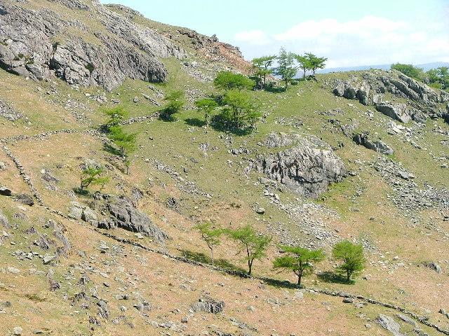 Birk Fell