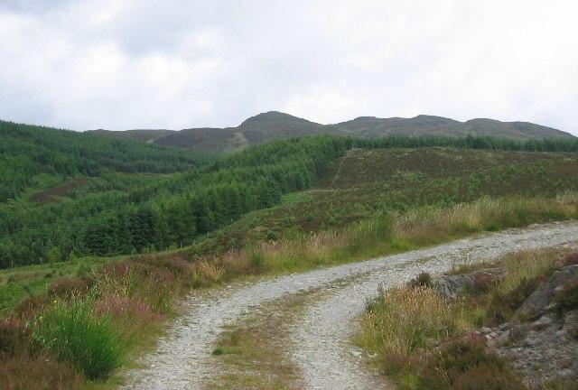 Cashell Wood