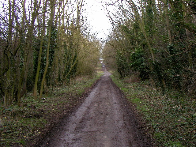 The footpath north eastwards out of Welton.