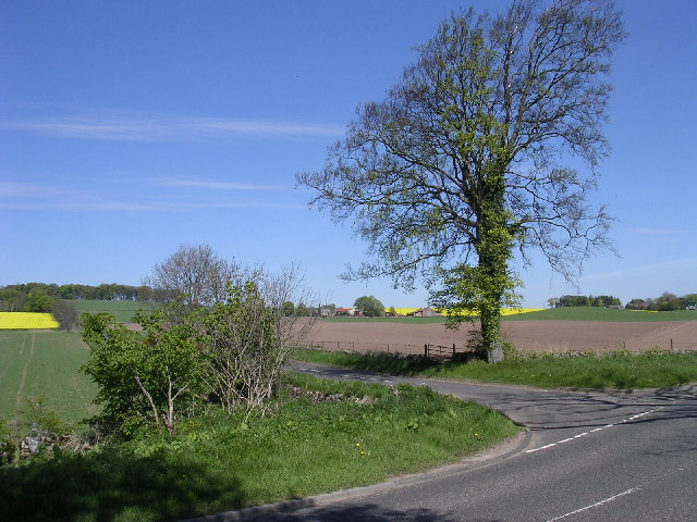 Junction on the B978