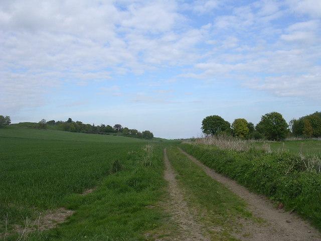 Farm track near Ethiebeaton