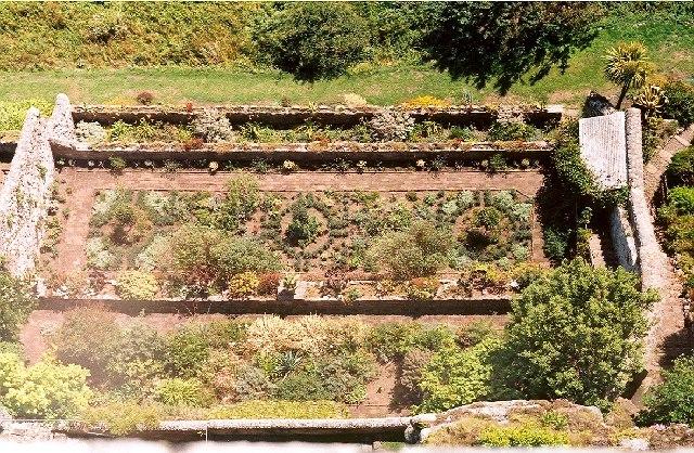Herb Garden at St Michael's Mount