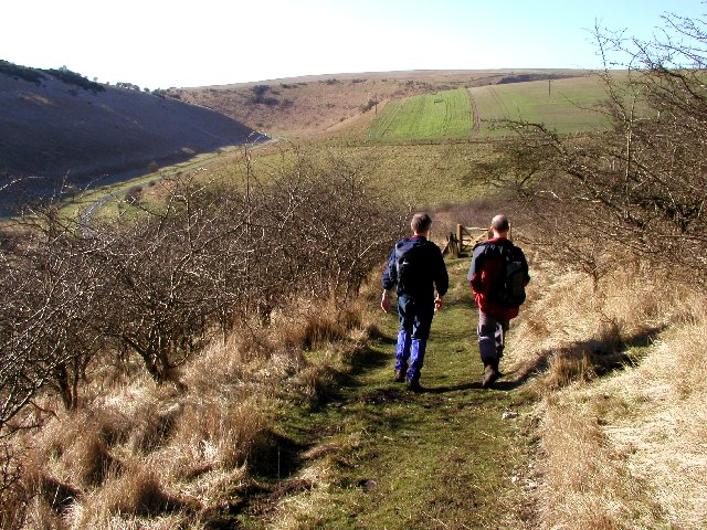 On the Wolds Way next to Jessop's Plantation