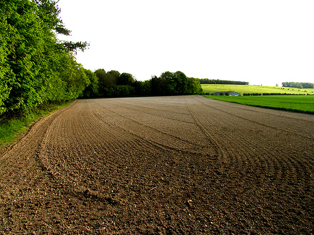 Ploughed Land: East Hendred