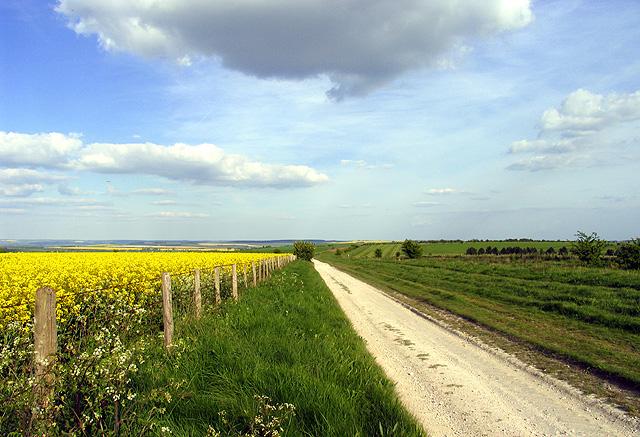 The Ridgeway: Berkshire Circular Route
