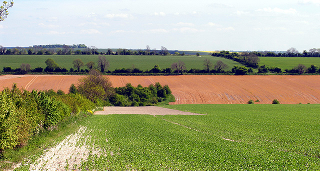 Farmland near Chilton
