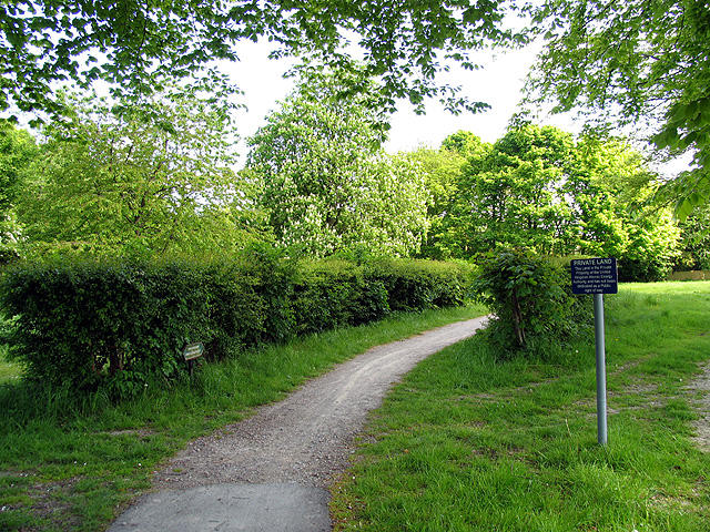 The cycleway