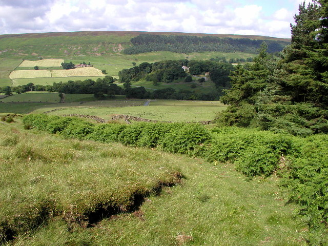 Bransdale near Cockayne