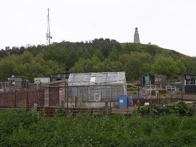 Allotment gardens on the Law