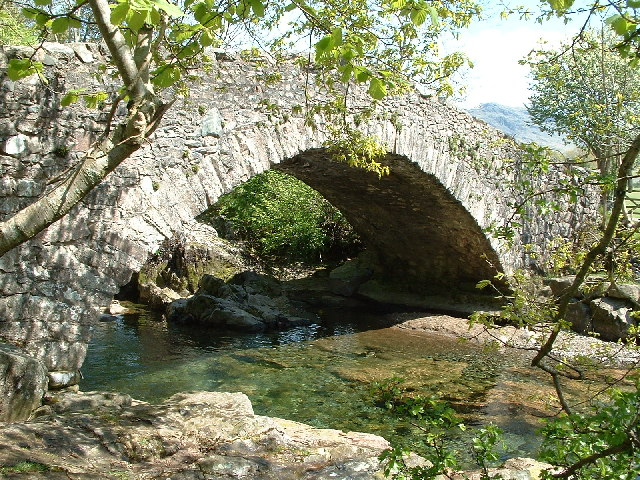 Doctor Bridge