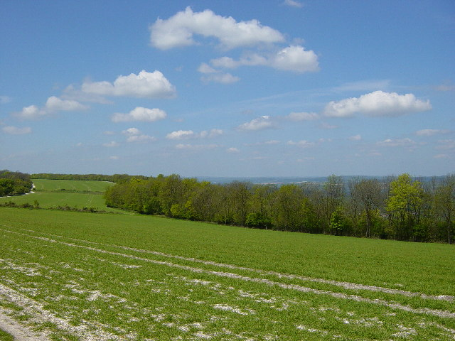 View from South Downs Way