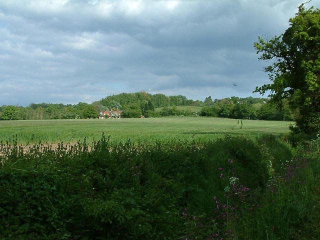Field by Aveylane Farm