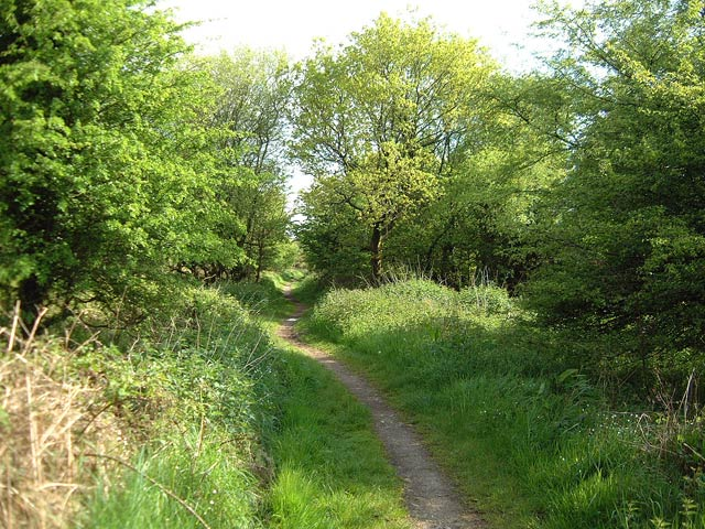 Bridlepath to North Hill