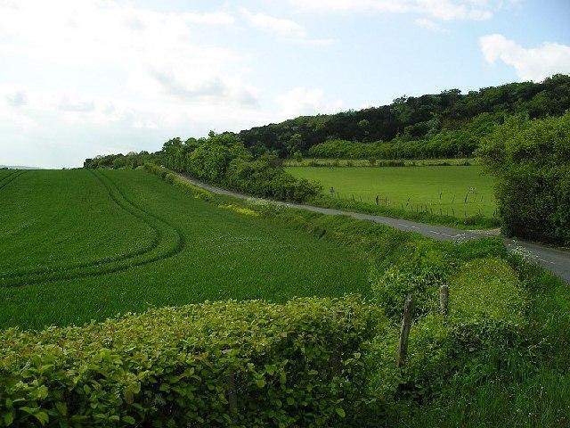 North Downs scarp slope, Kent