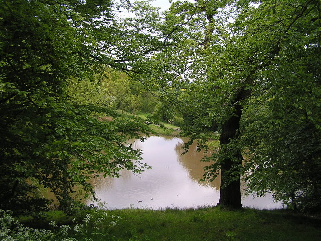 Lake at Pipers Hill wood