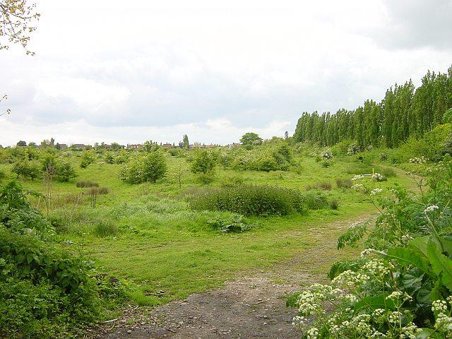 Borden Nature Reserve