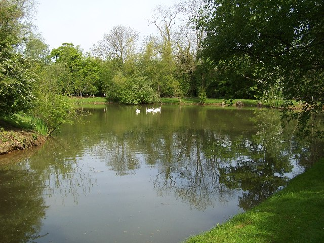 Thealby Hall Duck Pond